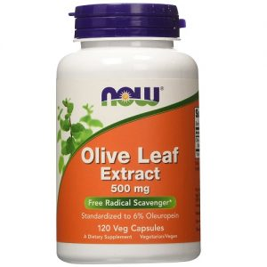 Now Foods olive leaf extract 500mg
